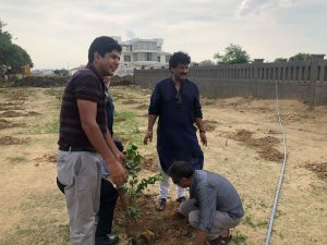 tree plantation2